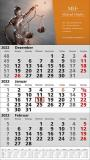 Standard 1 plus  3-Monats-Wandkalender